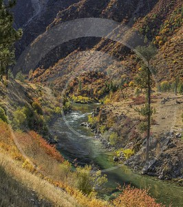 Lowman Idaho Grass River Valley Forest Tree Blue Pass Nature Autumn Fine Art Photography For Sale - 022274 - 09-10-2017 - 12496x14119 Pixel