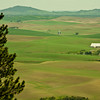 View of the Palouse region from Kamiak Butte