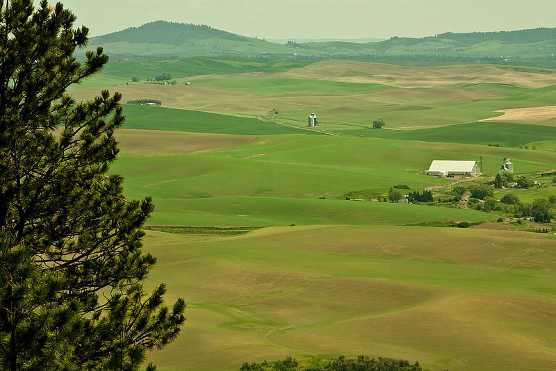 Scene from Kamiak  Butte WA