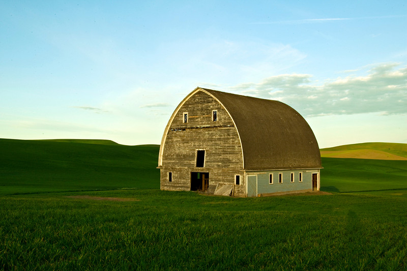 Found in the midst of large fields of Winter wheat, this barn, long since abandoned is symbolic of the changing ways of life in this region.