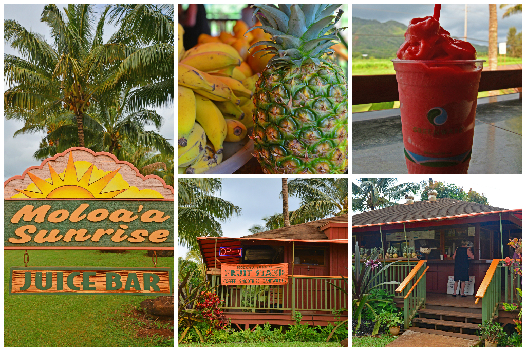 Moloa'a Sunrise Juice Bar in Kauai