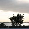 Key West-72