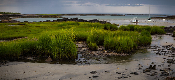 Low tide at the seashore, ME