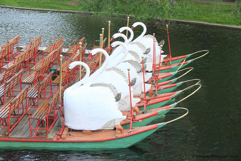 Boston Public Gardens Swan Boats