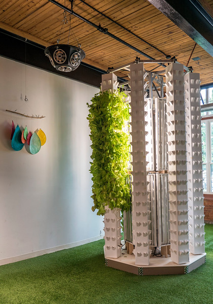 Dine at Mill 180 Park - Park to Table Concept - Hydroponics