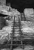 Stairs_0632BW