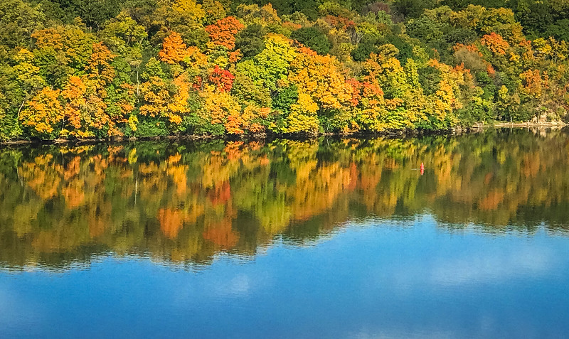 fall foliage by mississippi river