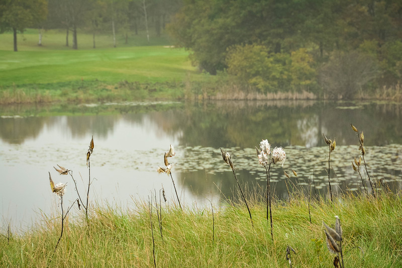 territory golf club