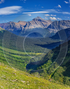 Going To The Sun Road Glacier National Park Royalty Free Stock Images Flower - 017427 - 01-09-2015 - 7704x9861 Pixel