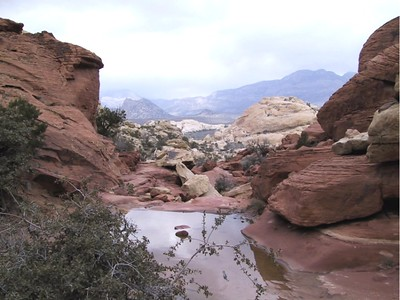 17 - Red Rock Pool