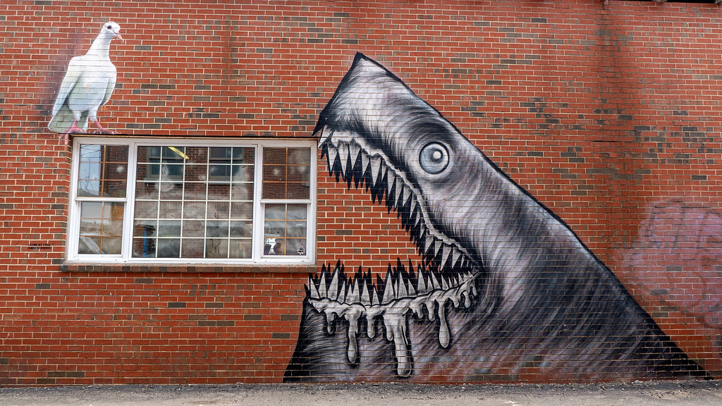 Shark and Sea Bird street art in Portsmouth New Hampshire - Downtown Portsmouth NH