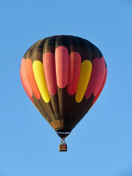 Albuquerque International Balloon Fiesta - A Bucket List Adventure - Albuquerque, New Mexico