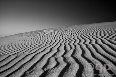 DUNES BLACK AND WHITE