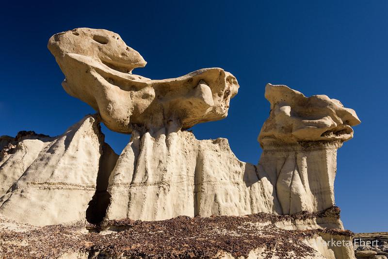 Sculptured rocks at Bisti Badlands