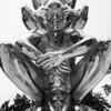 Sculpture Garden, New Orleans [Karma, 2011, by Do-Ho Suh, Korea]