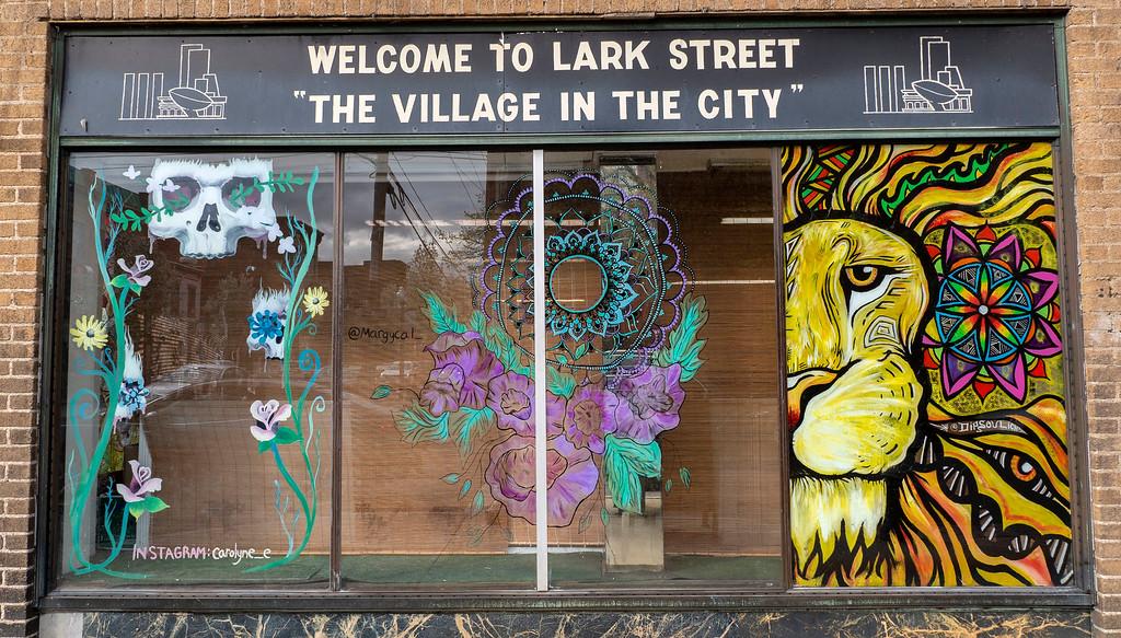 Lark Street Village in Albany NY