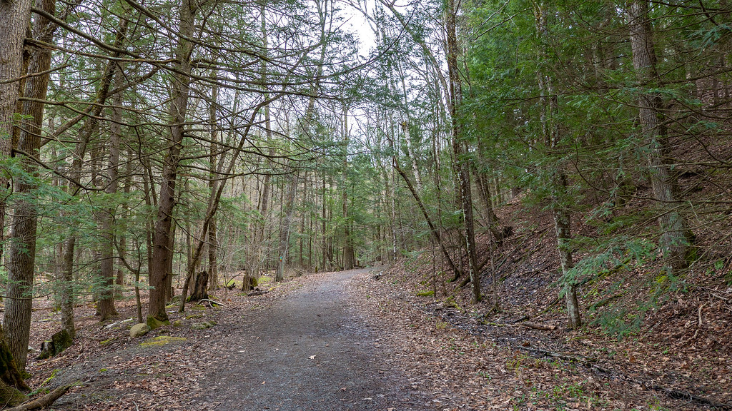 John Boyd Thacher State Park - Paint Mine Trail