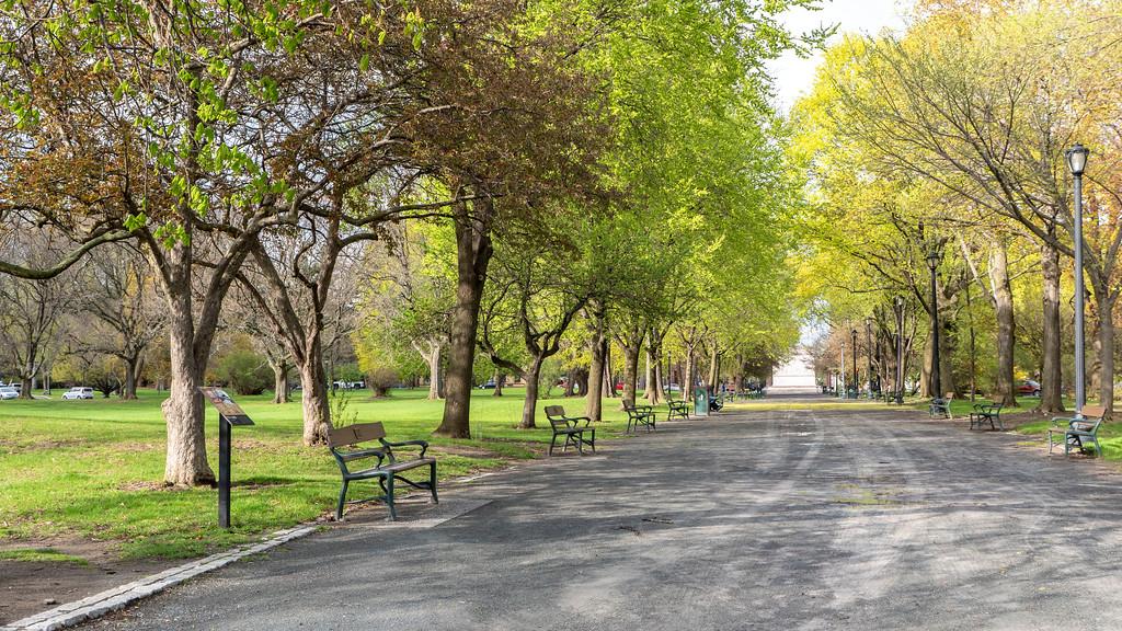 2 days in Albany NY - Washington Park