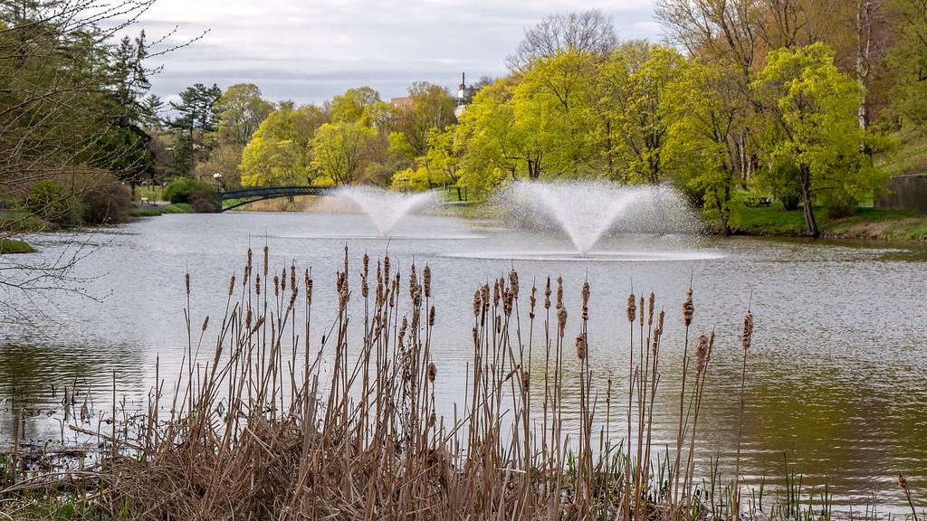 Washington Park - Albany itinerary