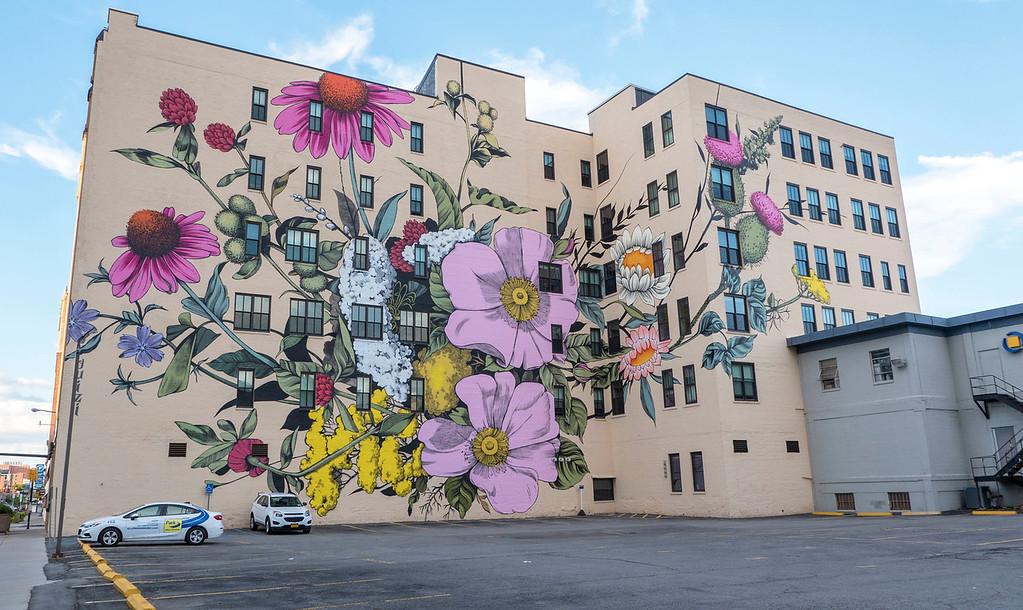 Buffalo NY street art