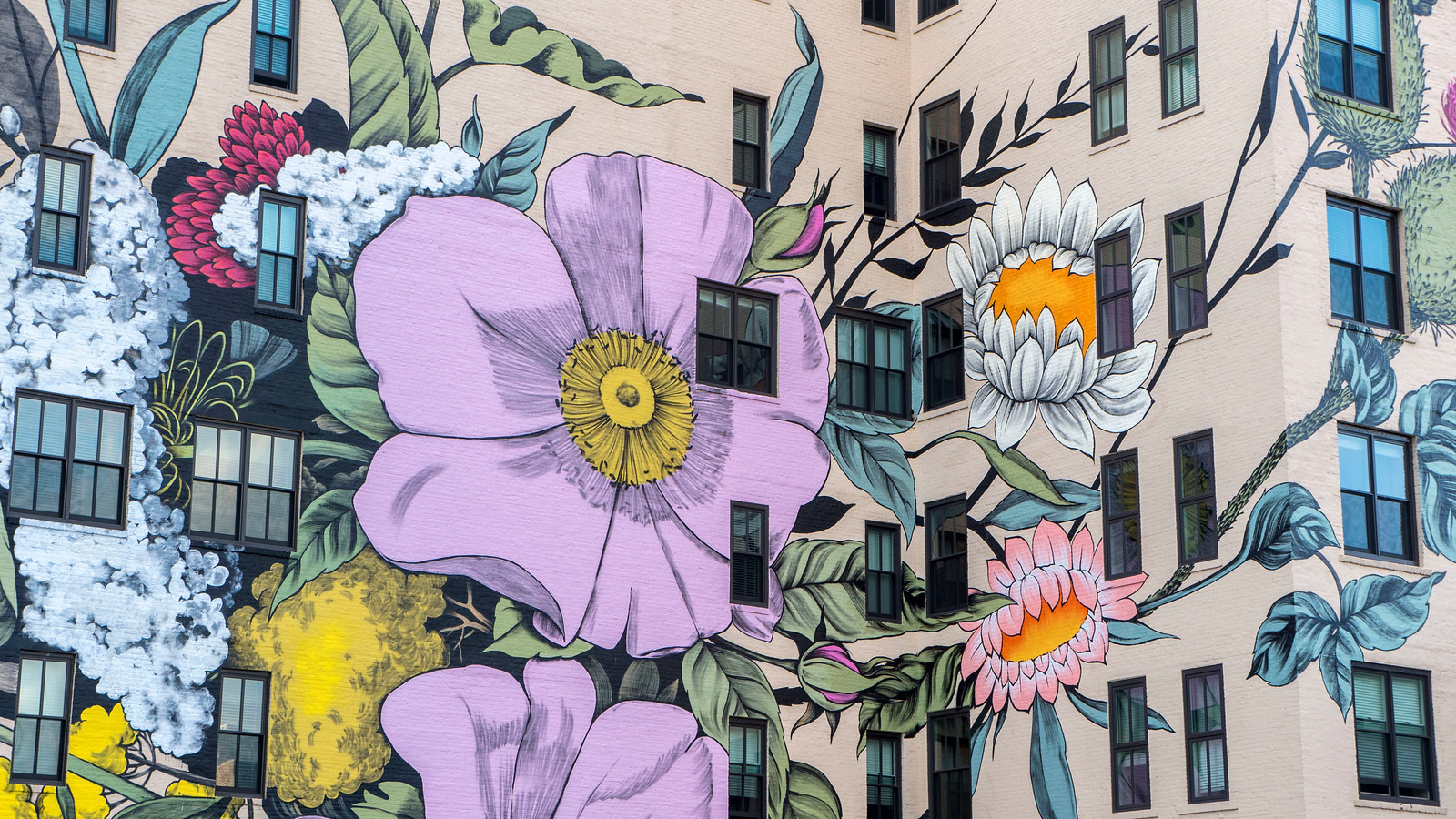 Where to Find Street Art in Buffalo and Niagara Falls, NY - Wildflowers for Buffalo