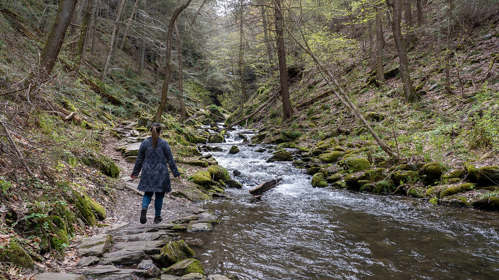 Exploring Dutchess County in 2019