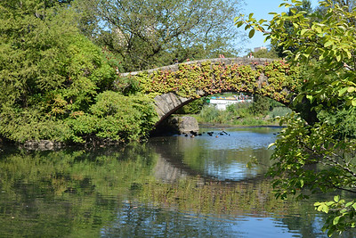 Gapstow Bridge on the lake 2