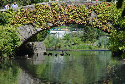 A close-up of Gapstow Bridge, famous for the Home Alone scene
