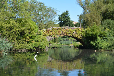 Gapstow Bridge on the lake 3