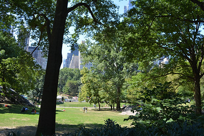 The heart of Central Park