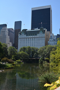 View of the Plaza Hotel from Central Park