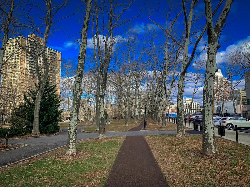 cadman plaza park brooklyn