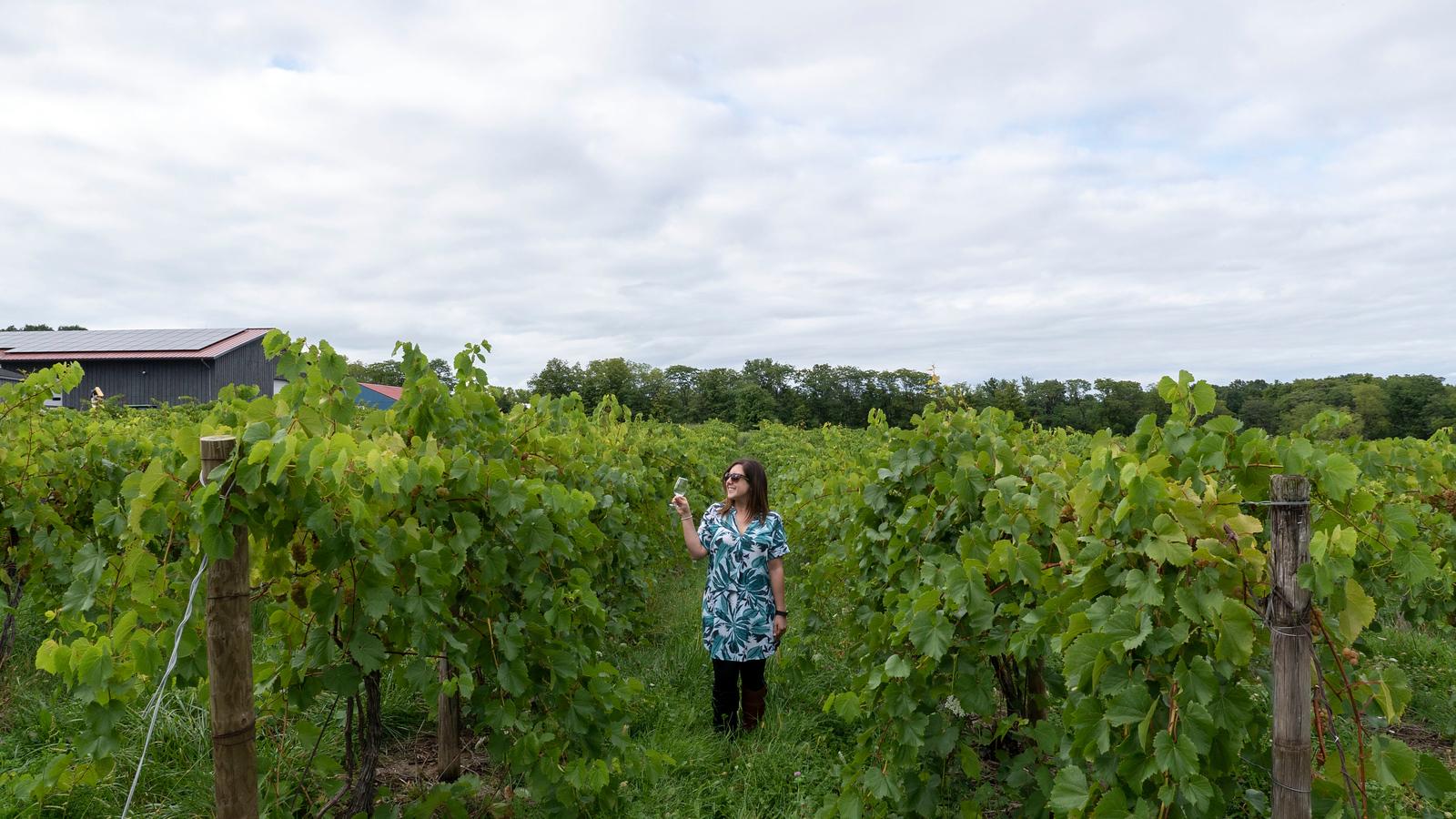 Vegan Wineries: 10 Best Wineries on Seneca Lake NY - Lakewood Vineyards