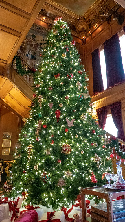 Giant Christmas Tree at Staatsburgh - Christmas decorated mansions in Dutchess County