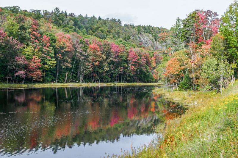 Pond Near Old Forge, NY