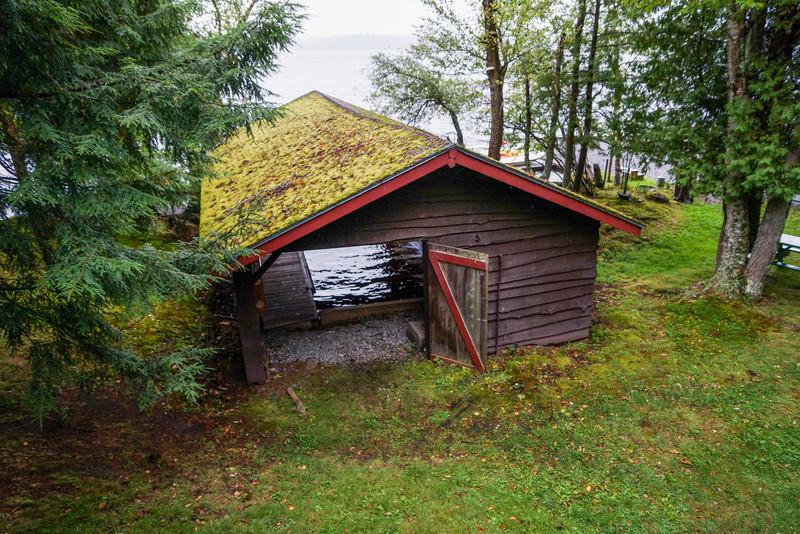Moss on Boathouse, Camp Pine Knot
