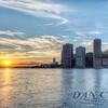 NYC Day'z