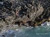 Woman-fishing-from-the-lava-rocks,-Makapuu-Tidepools,-Oahu,-Hawaii