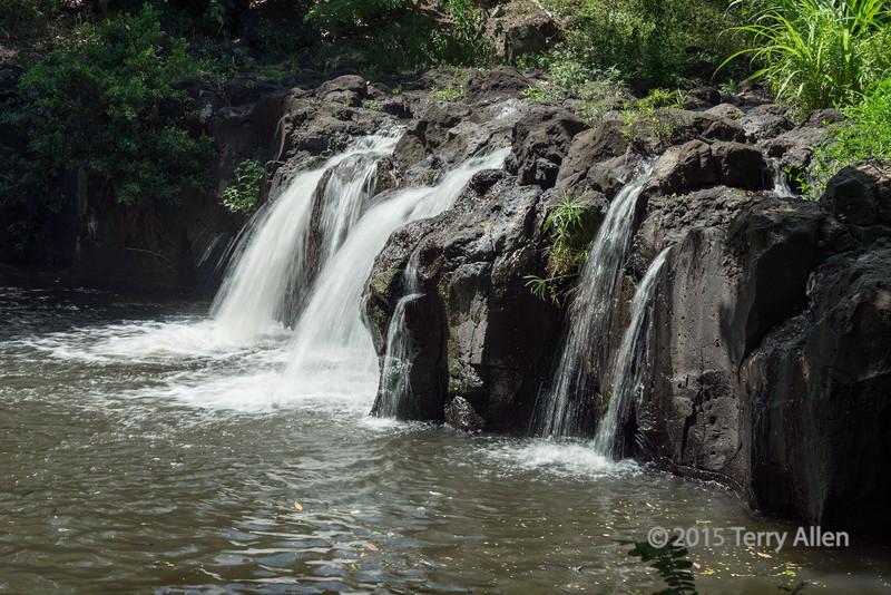 Waterfall,-Lili'uokalani-Botanic-Garden,-Honolulu,-Oahu