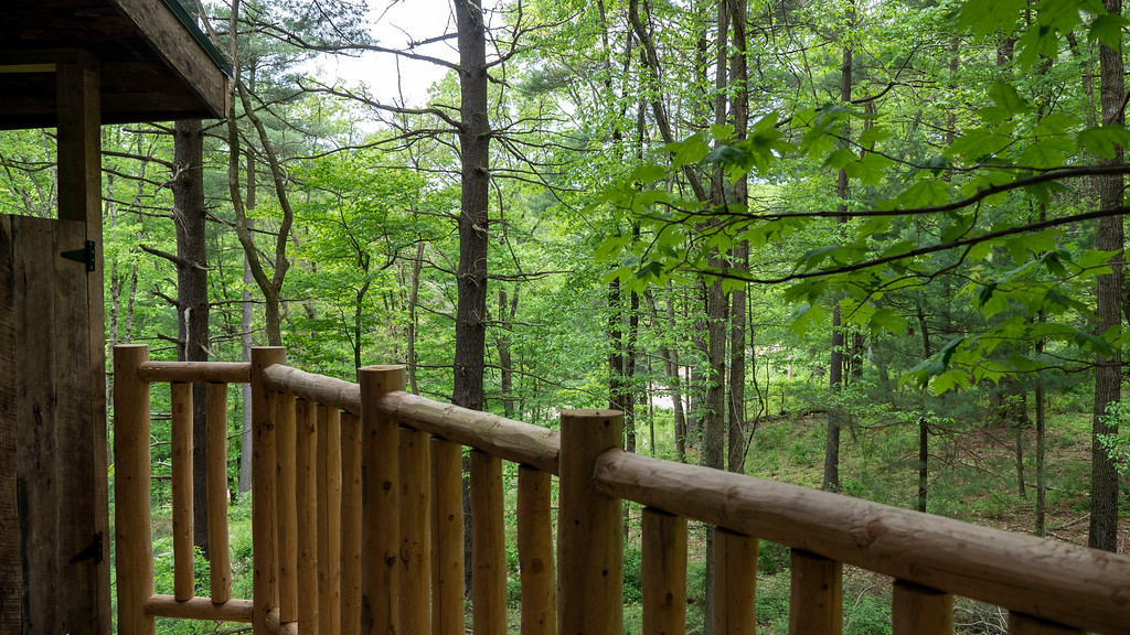 View from the balcony at El Castillo treehouse in Ohio at The Mohicans