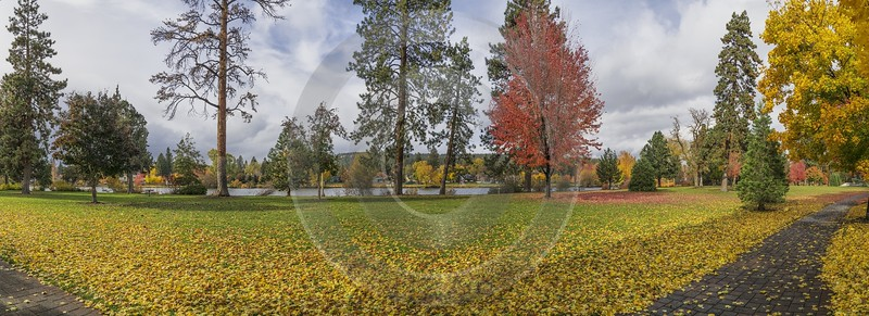 Bend Drake Park Autumn Tree Color Leave Colorful Fine Arts Photography Country Road Coast - 021798 - 21-10-2017 - 21051x7645 Pixel