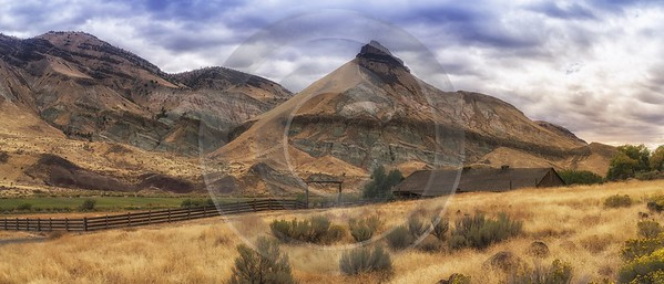 Dayville Oregon John Day Highway Country Site Forest Prints For Sale Flower Photography - 022338 - 07-10-2017 - 23435x10031 Pixel