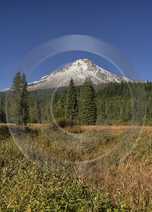 Government Camp Mount Hood National Forest Oregon Snow Lake Fine Art Landscape Photography Ice - 022403 - 05-10-2017 - 7675x10686 Pixel