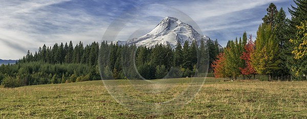 Parkdale Mount Hood National Forest Oregon Orchard Snow Creek Shore Royalty Free Stock Images Grass - 022395 - 06-10-2017 - 17652x6850 Pixel