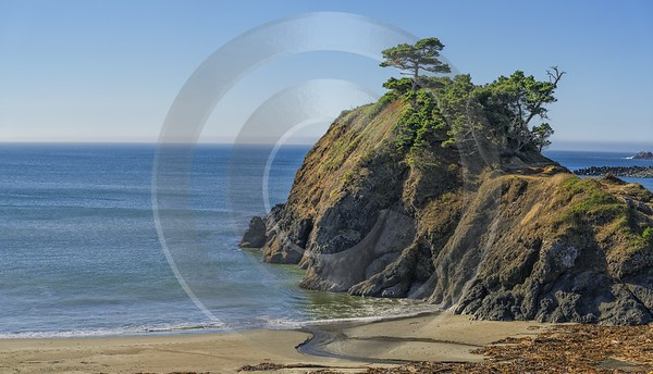 Port Orford Beach Flower Oregon Pacific Coast Ocean Photo Photography Prints For Sale - 022661 - 26-10-2017 - 12832x7347 Pixel