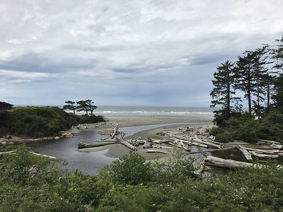 Kalaloch Lodge beach