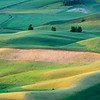 View from Steptoe Butte, Whitman County, Washington