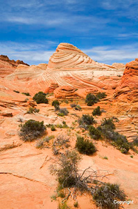 CoyoteButtes_1813