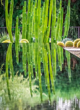 Sunnyland Gardens
