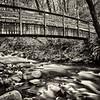 Bridge in a forest Bridal Veil Falls